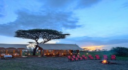 Serengeti under canvas tanzania private holidays