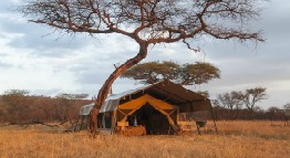 serengeti-kati-kati-tented-camp-tanzania-private-safaris