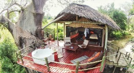 tarangire-river-camp-mbalimbali-tanzania-private-safaris