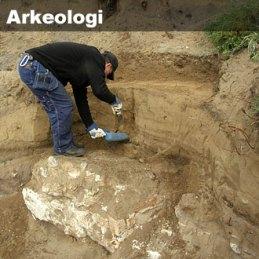 Ulasan Mengenai Perkembangan Arkeologi