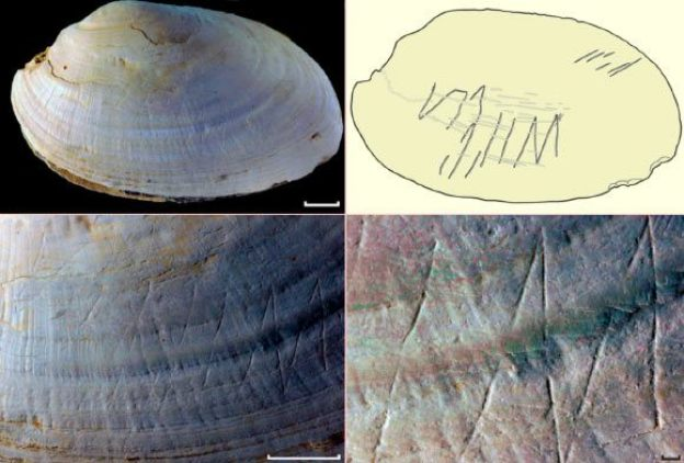 Torehan Zig-Zag Kuno Tertua di Dunia