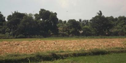 Dusun Karang Kenek