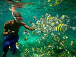 Snorkling in Jamaica