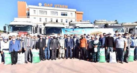 Diyarbakır'da 650 çiftçiye 210 ton mercimek tohumu desteği
