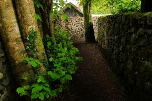 a path between stone walls surrounded by giant trees