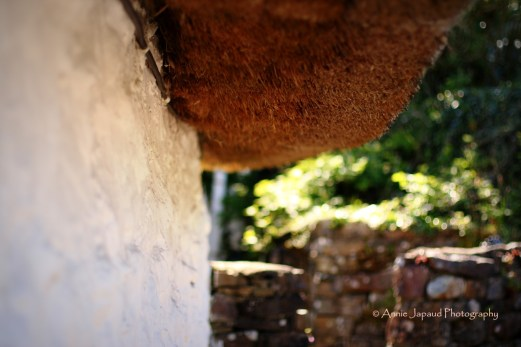 Under the thatched roof