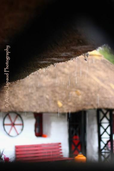 dripping water from thatched roof
