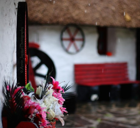 rain dropsfalling from the thatched roof