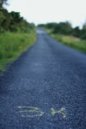 long blue road