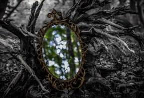 APC Mirror Mirror pic_Anni Gabud