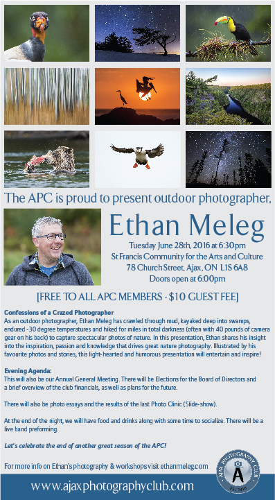 APC_Ethan Meleg Poster JUNE 2016_FINAL