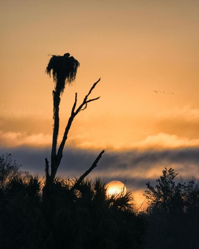 Intermediate_Kathie Waterhouse_ Sunrise Silhouette