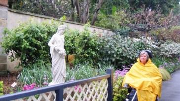 Botanic gardens, 16th August 2014