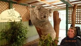 Featherdale Wildlife Park Doonside NSW 30 05 2016.15
