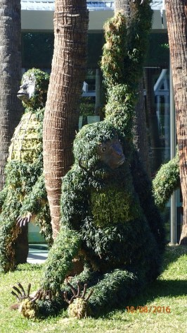 Spider Monkey Topiary