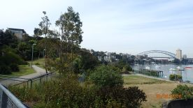 City from Waverton Reserve