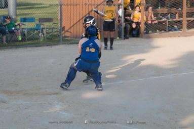 Softball Level 2 Vinton Shellsburg vs Benton Community 2014-6638
