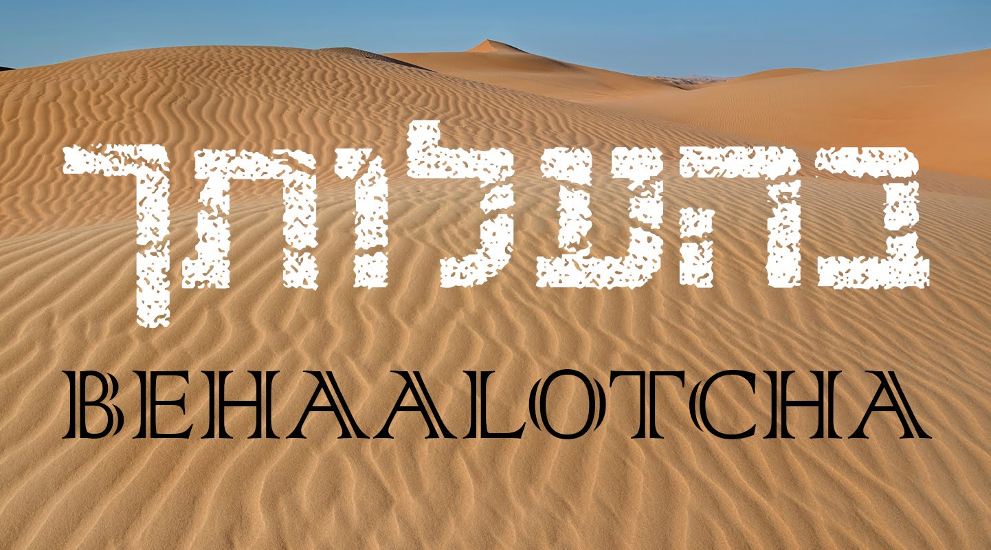 Weekly Portion: Be'halot'cha (Numbers 8-12)