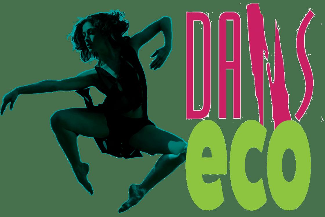 danseco-ajcm-handi-valide
