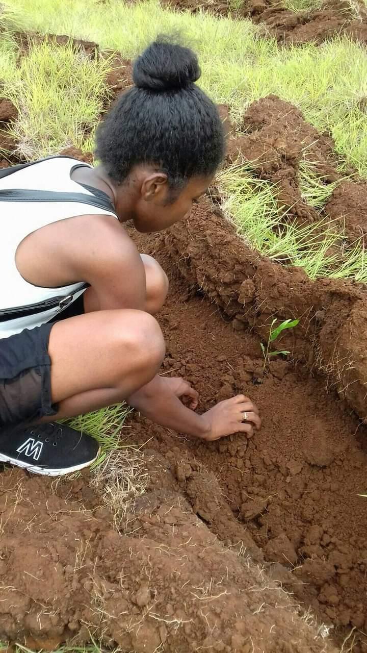 Action de reboisement dans le Nord de Madagascar