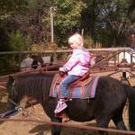 "Kaylyn riding ""Splash"""