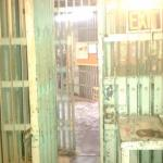 "The ""entry"" into the cells"