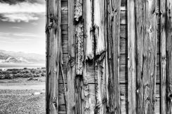 Weathered Wood and Desert, Ballarat, Death Valley, 15Mar2017, Photo by Allan J Jones