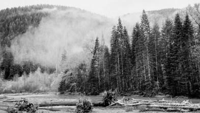 N Fork Skokomish mist, October 19, 2016, Photo by Allan J Jones