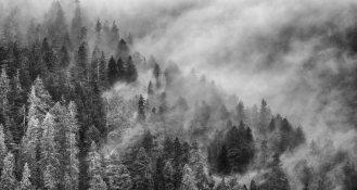 Inside Passage, Misty Ridge, May 13, 2017, Photo by Allan J Jones
