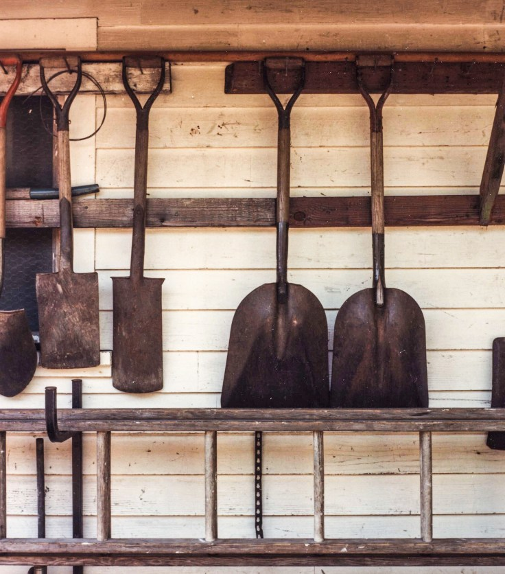 Shovels Modrian, Film original, Photo by Allan J Jones