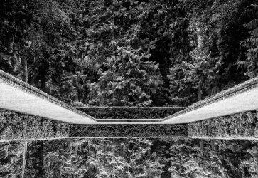 Bloedel Reflecting Pool, inverted, Photo by Allan J Jones