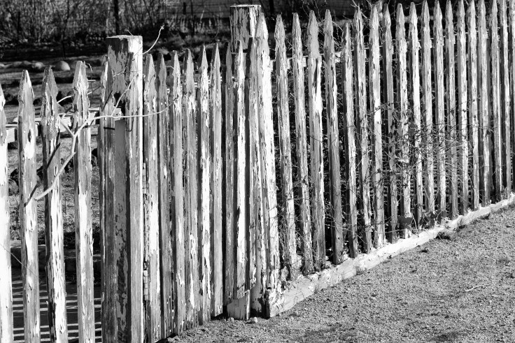 Fence in Independence, CA by Allan J Jones Photography