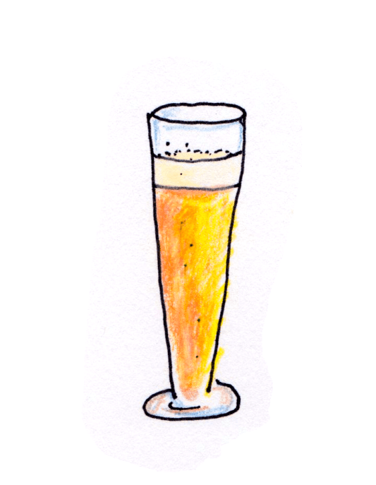 drawing of pilsner glass with golden beer and foam head