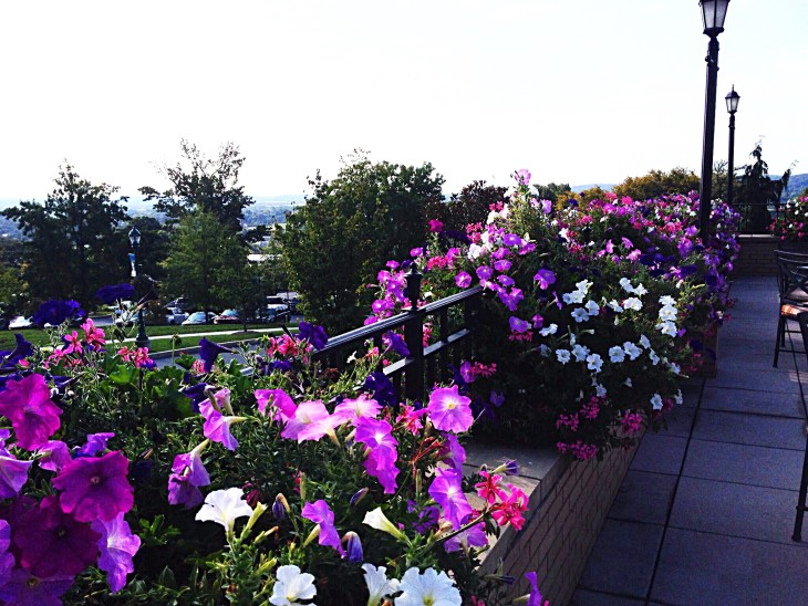 Flowers adorn the terrace railings.