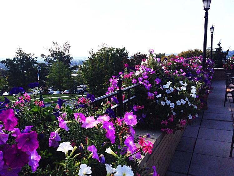 Flowers adorn the terrace railings.