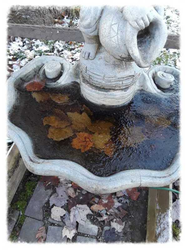 garden fountain with leaves, iced over