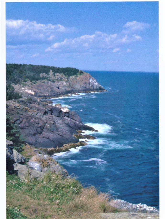 The cliffs on Monhegan are visible from hiking trails that crisscross the island.
