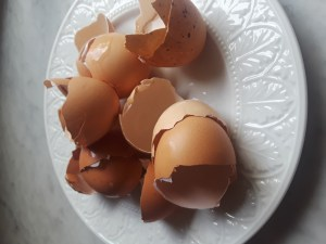 eight cracked brown egg shells