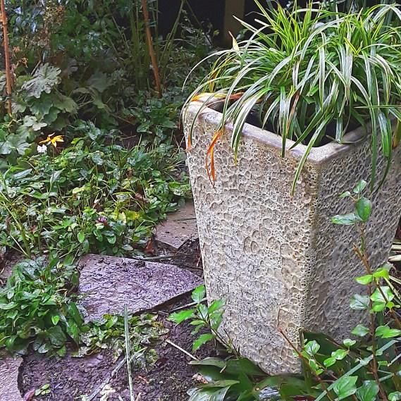 a concrete planter among greenery in the garden