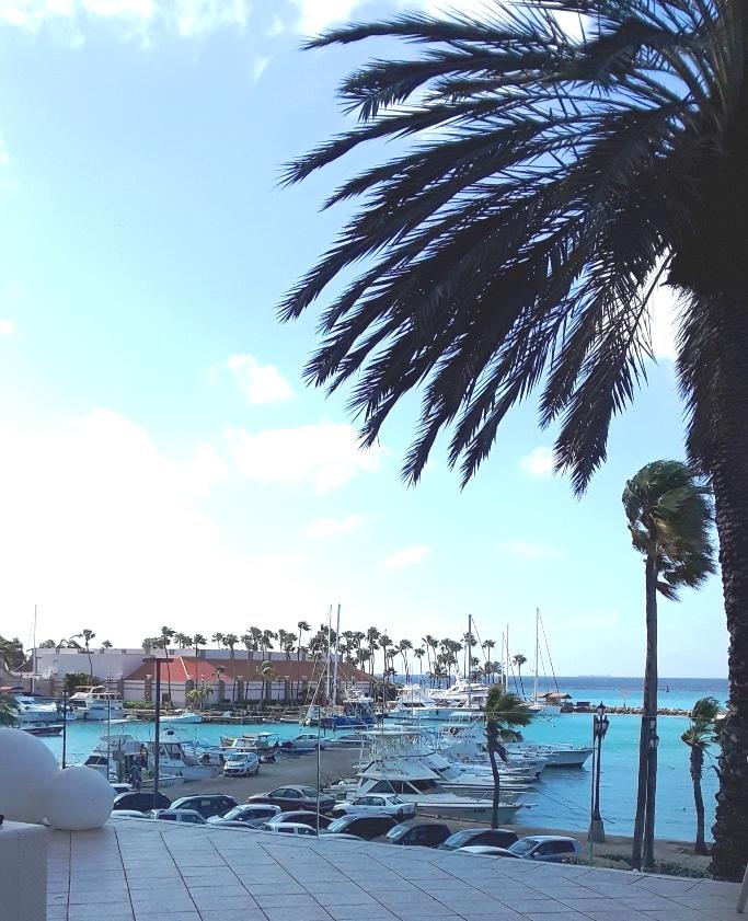 The Marina hotel has views of cruise ships and smaller boats.