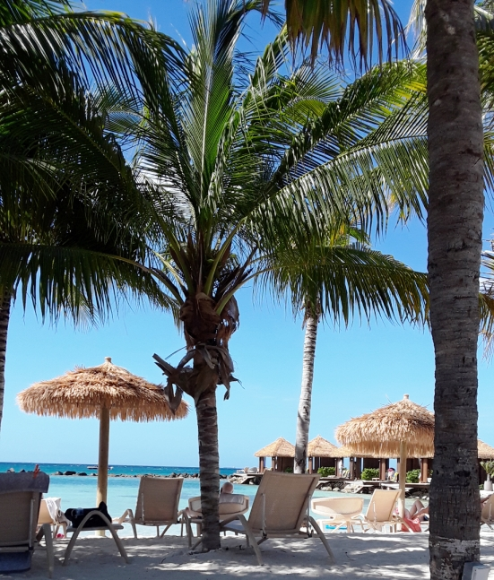 A palm tree, lounge chairs, and white sands welcome you to the island.