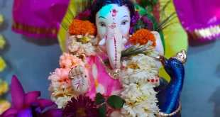 Moving Toward an Eco-Friendly Ganeshotsav