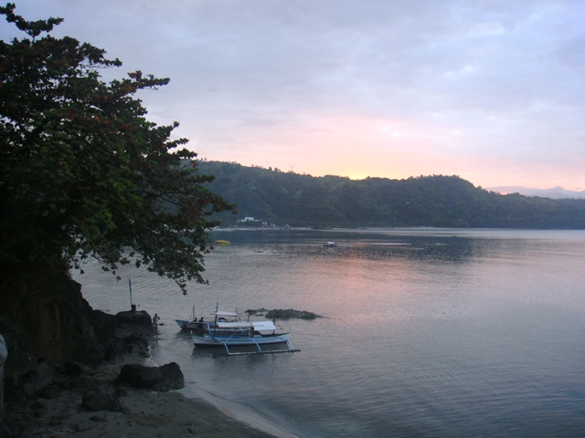 The Cliff and White Orchid in Subic