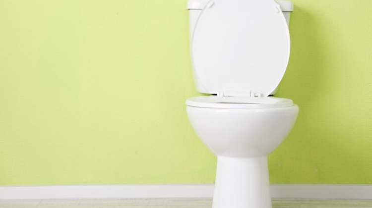 bowel cancer screening: toilet with raised seat, bowel cancer concept