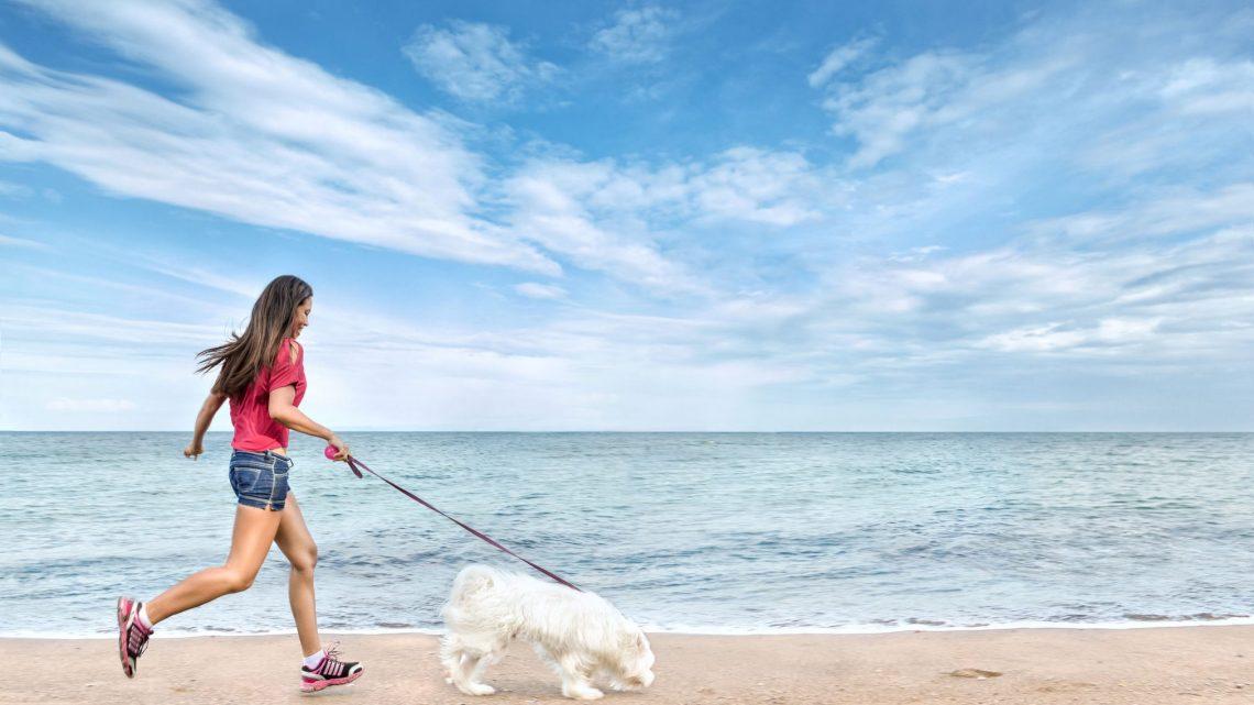 woman walking dog at the beach