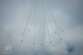 Armed Forces Day-337