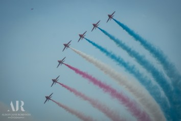 Armed Forces Day-379