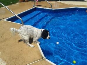 AJ at Grandma's Pool