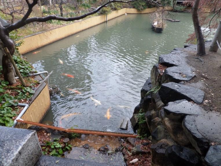 A pond at the shrine