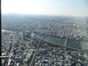 Skytree views.